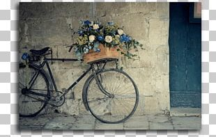 Bicycle Baskets Flower Bicycle Shop Vintage Clothing PNG