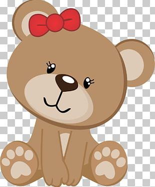 Infant Bear Baby Shower Party PNG
