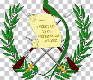 Emblem Of Guatemala Coat Of Arms Flag Of Guatemala National Emblem PNG