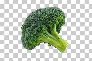 Broccoli Sprouts Cauliflower Vegetable PNG