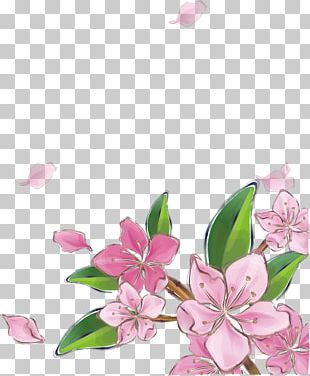 Pink Peach Blossom PNG