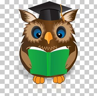 Reading Book Owl Online Writing Lab PNG