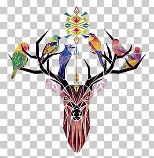 Deer Bird Drawing Art Illustration PNG