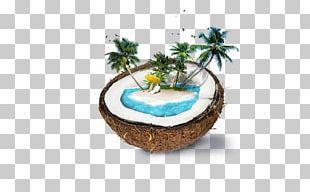 Nadi Weligama Coconut Water Coconut Milk PNG