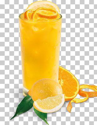 Orange Juice Lemonade Orange Drink Fuzzy Navel PNG