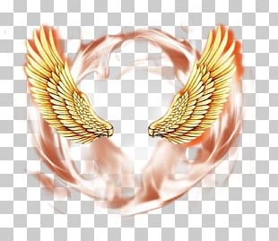 Angel Wings Psd Material PNG