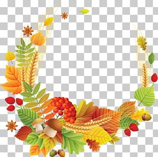 Autumn Leaves Autumn Leaf Color Maple Leaf PNG