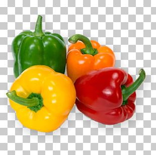 Bell Pepper Vegetable Chili Pepper Food Fruit PNG