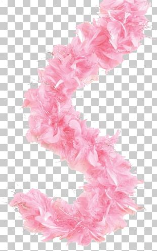 Feather Boa Costume Clothing Tassel PNG