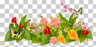 Flower Garden Parterre Lawn PNG