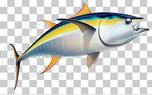Yellowfin Tuna Fishing Friend Of The Sea PNG