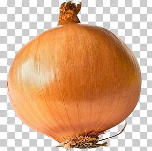 French Onion Soup Naporitan Potato Onion Shallot Yellow Onion PNG
