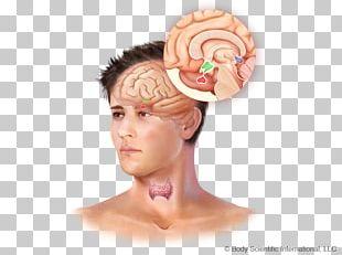 Forehead Headgear PNG