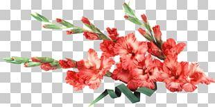 Wedding Flower Bouquet Desktop Bangalore PNG