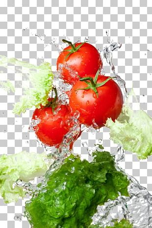 Pizza Tomato Water Fruit Food PNG