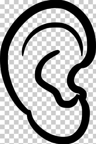 Ear Anatomy PNG