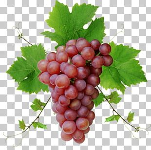 Grape Seed Oil Desktop Juice Grape Seed Extract PNG