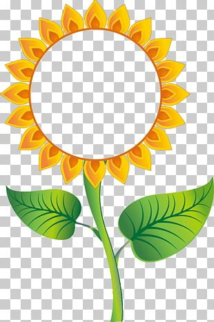 Graphics Common Sunflower Sunflowers Poster PNG