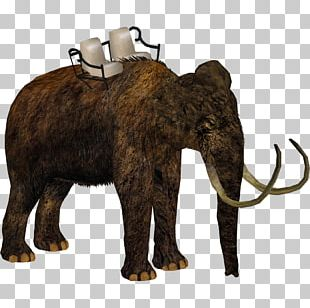 Zoo Tycoon 2: Marine Mania African Elephant Woolly Mammoth Steppe Mammoth PNG