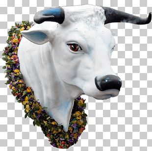 Goat Cattle Park Range Rocky Mountains Mardi Gras In New Orleans PNG