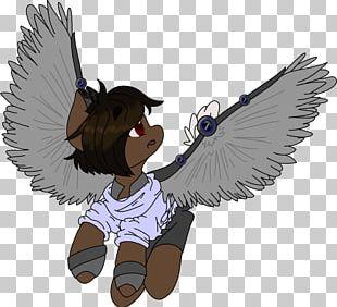 Bird Of Prey Beak Cartoon Feather PNG