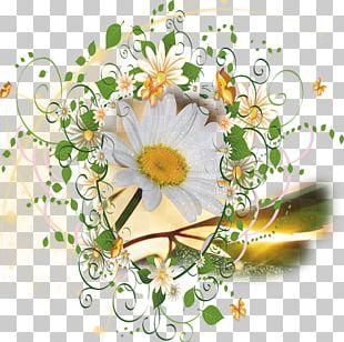 Floral Design Flower Paper PNG