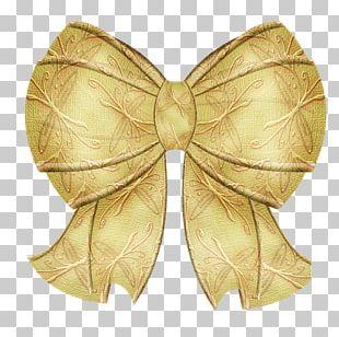Gift Ribbon Lazo PNG