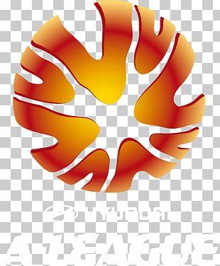A-League W-League Western Sydney Wanderers FC English Football League Australian Football League PNG