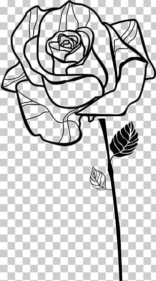 Beach Rose Flowering Tea China Rose Multiflora Rose PNG