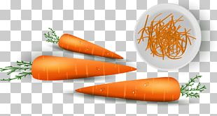 Baby Carrot Vitamin Vegetable PNG