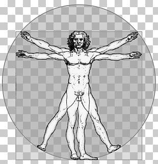 Vitruvian Man Homo Sapiens Person PNG
