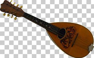 Musical Instruments String Instruments Mandolin Plucked String Instrument PNG