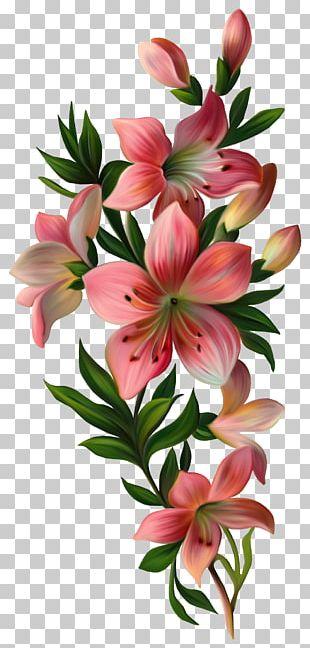 Flower Vintage Clothing PNG