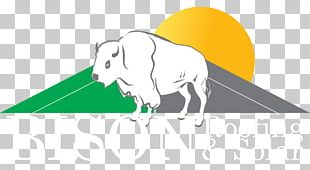 Bison Roofing And Solar Solar Power Roofer Solar Energy PNG
