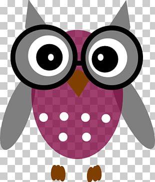 Owl Grey PNG