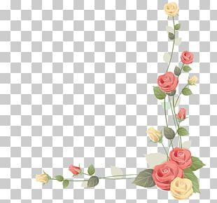 Beach Rose Flower Color Paper PNG