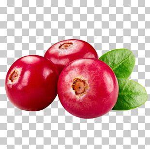 Cranberry Juice Cookie Food Auglis PNG