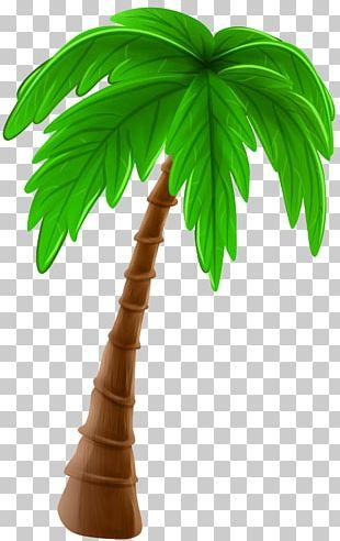 Tree Arecaceae Cartoon PNG