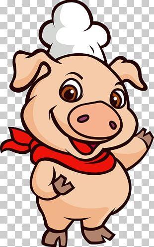 Domestic Pig Illustration PNG