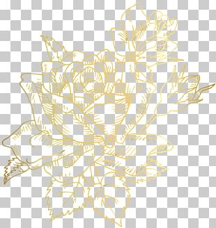 Borders And Frames Flower Rose Petal PNG