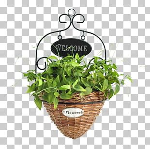 Wreath Leaf PNG