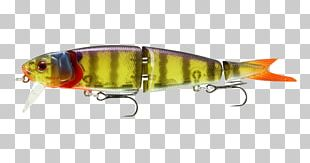 Plug Perch Fishing Baits & Lures Spoon Lure PNG