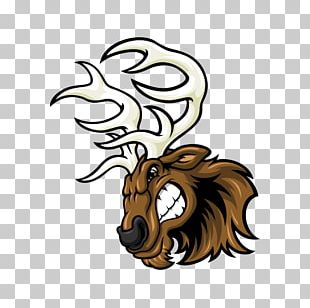 Lion Red Deer Elk Sport PNG