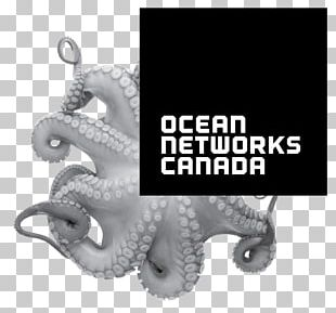 Ocean Networks Canada Earth University Of Victoria Pacific Ocean Salish Sea PNG