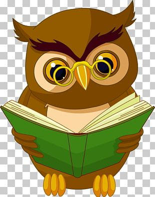 Owl Animated Cartoon Drawing Animation PNG