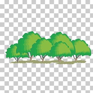 Cartoon Trees PNG