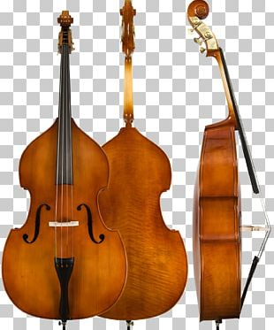 Double Bass Bass Guitar String Instruments Cello Violin PNG