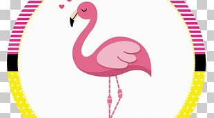 Flamingos Bird Party Birthday PNG
