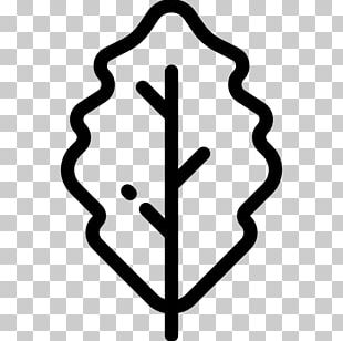 Tree Oak Computer Icons PNG