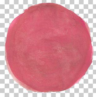 Magenta Circle Petal Pink M PNG